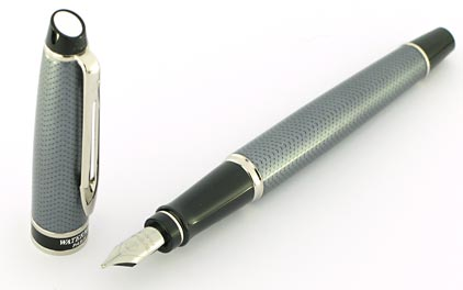 stylo plume waterman expert